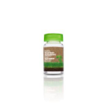 Tratamiento especifico caspa лосьон для жирной кожи головы BIOKERA Salerm (Салерм)
