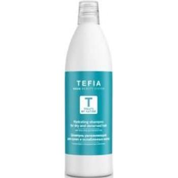Шампунь увлажняющий для сухих и ослабленных волос с алоэ вера и миндальным молочком TEFIA