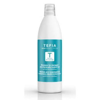 Шампунь для поврежденных и химически обработанных волос с маслом арганы и макадамии TEFIA