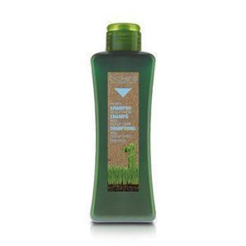 Honey Shampoo Scalp Care Медовый шампунь SALERM